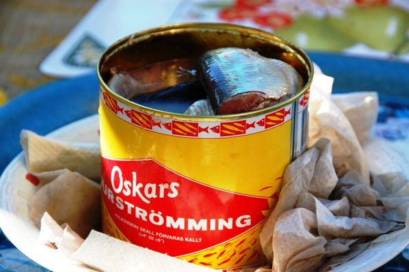 Surströmming (Skandinavia) - www.jurukunci.net
